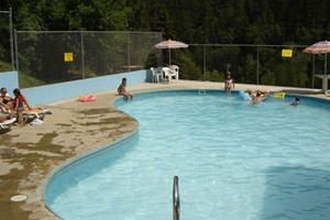 Deadwood KOA :: RV and Tent Camping with a shuttle to Deadwood attractions. Outdoor pool, free wifi, playground, pet friendly.
